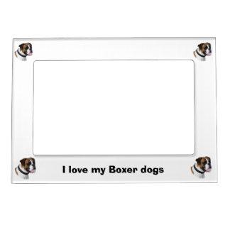 Foto del retrato del perro del boxeador marcos magnéticos de fotos