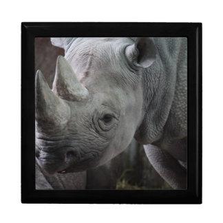 Foto del rinoceronte negro joyero cuadrado grande
