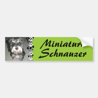 Foto del Schnauzer miniatura Pegatina Para Auto