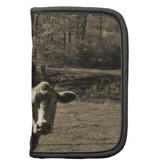 Foto del tono de la sepia de la vaca de Brown Planificadores