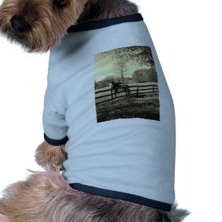 Foto del tono de la sepia del caballo blanco y neg camisetas de mascota