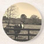 Foto del tono de la sepia del caballo marrón y bla posavaso para bebida