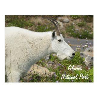 Foto del viaje de la cabra de montaña del Parque Postal