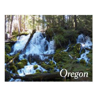 Foto del viaje de las cascadas de Oregon Tarjeta Postal