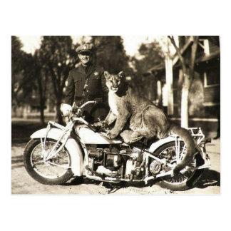 foto del vintage del oficial de policía en puma de postal