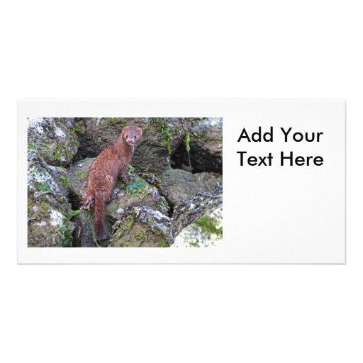 Foto del visión tarjetas con fotos personalizadas