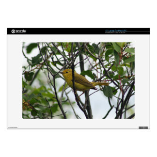 Foto del Yellowthroat bonito 38,1cm Portátil Calcomanías