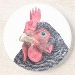 Foto divertida de la gallina del pollo que frunce  posavasos para bebidas