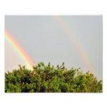 Foto doble del arco iris con el cielo y los árbole
