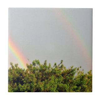 Foto doble del arco iris con el cielo y los árbole azulejo ceramica