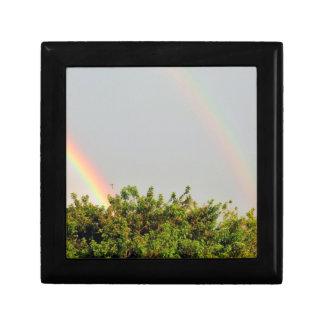 Foto doble del arco iris con el cielo y los árbole cajas de recuerdo