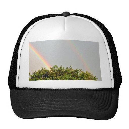 Foto doble del arco iris con el cielo y los árbole gorras