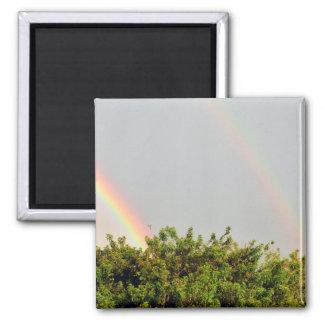 Foto doble del arco iris con el cielo y los árbole imán