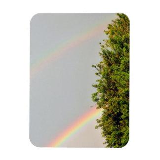 Foto doble del arco iris con el cielo y los árbole imán de vinilo