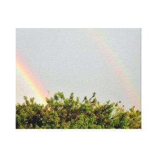 Foto doble del arco iris con el cielo y los árbole lona envuelta para galerias