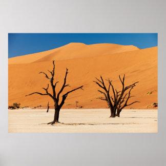 Foto el desierto de Namib con Dead Vlei Impresiones