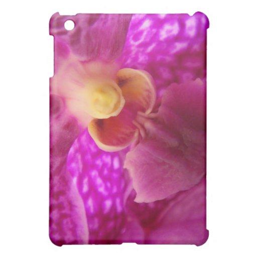 Foto elegante del gráfico de la orquídea