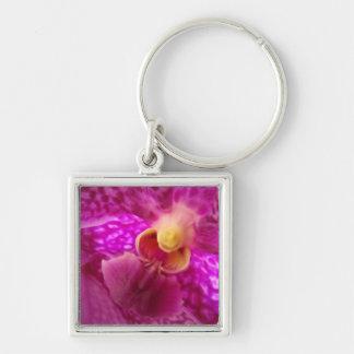 Foto elegante del gráfico de la orquídea llavero