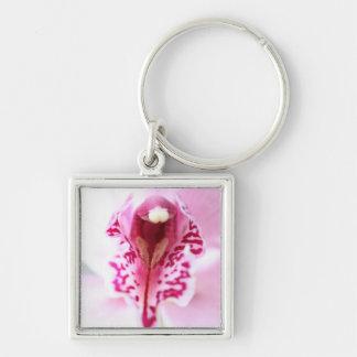 Foto elegante del gráfico del iris de la orquídea llaveros
