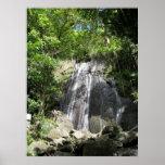 Foto enmarcada Puerto Rico del EL Yunque Impresiones