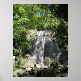 Foto enmarcada Puerto Rico del EL Yunque Póster