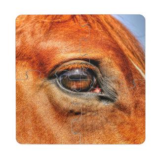 Foto equina 2 del ojo del caballo rojo del Dun Posavasos De Puzzle