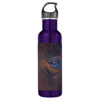 Foto equina del ojo del caballo hermoso botella de agua