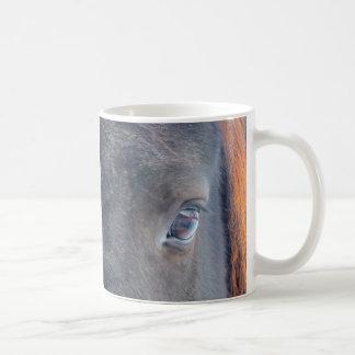 Foto equina del ojo del caballo hermoso tazas de café