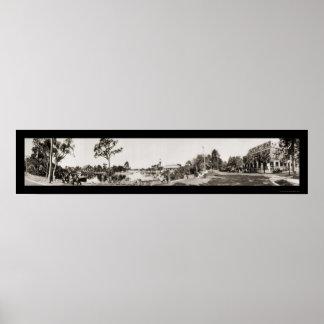 Foto escénica 1921 de FL del pantano de la primave Póster
