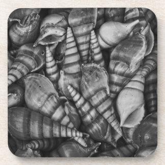 Foto espiral blanco y negro de los Seashells Posavaso