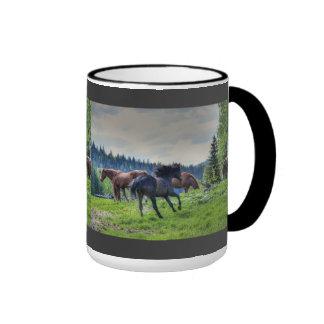 Foto excelente negra corriente 3 del caballo de taza de dos colores