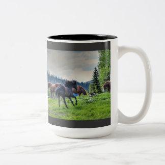 Foto excelente negra corriente 3 del caballo de taza de dos tonos