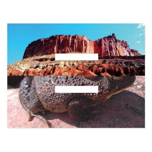 Foto fea bonita juxtapostion. tarjetas postales