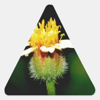 Foto floral de alta calidad pegatina triangular
