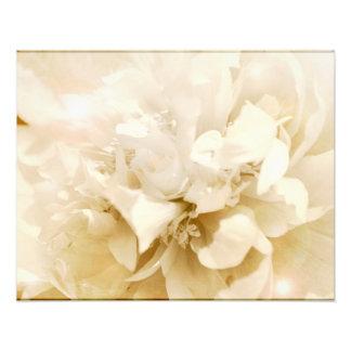 Foto floral de la flor blanca de la dalia del vint