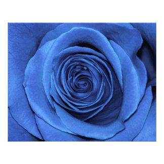 Foto floral de la flor color de rosa azul hermosa