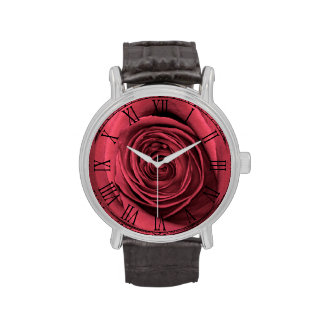 Foto floral de la flor color de rosa rosada relojes