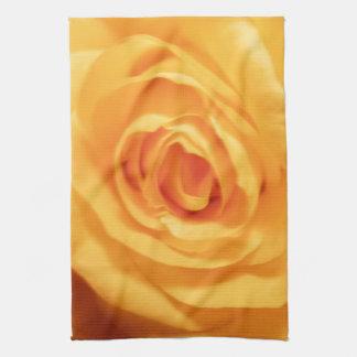 Foto floral de la flor de los rosas del brote del  toalla