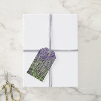 Foto floral de la lavanda etiquetas para regalos