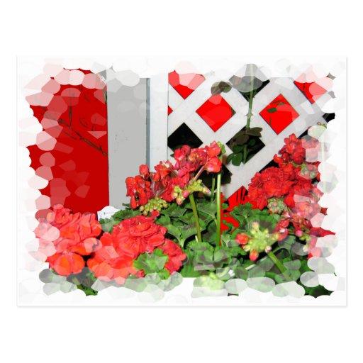 Foto floral de las flores de la naturaleza roja postal