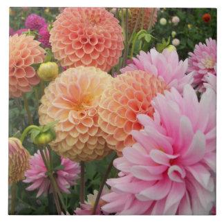 Foto floral del jardín de la dalia azulejo cuadrado grande