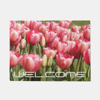 Foto floral del jardín rosado del tulipán felpudo
