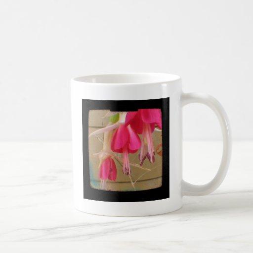 Foto fucsia rosada de la flor taza