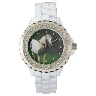 Foto gitana del caballo reloj