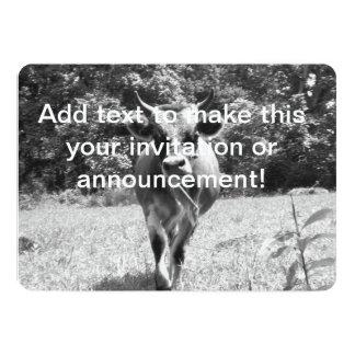 """Foto gris retra de Bull Invitación 5"""" X 7"""""""