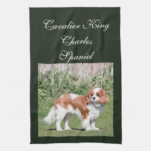 Foto hermosa de rey Charles del perro arrogante de Toalla