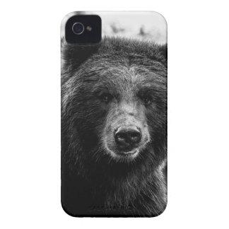 Foto hermosa del oso grizzly funda para iPhone 4