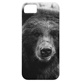 Foto hermosa del oso grizzly iPhone 5 carcasas
