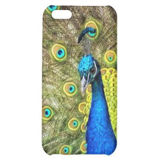 Foto hermosa del pavo real