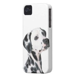 Foto hermosa del perro dálmata, regalo Case-Mate iPhone 4 protector